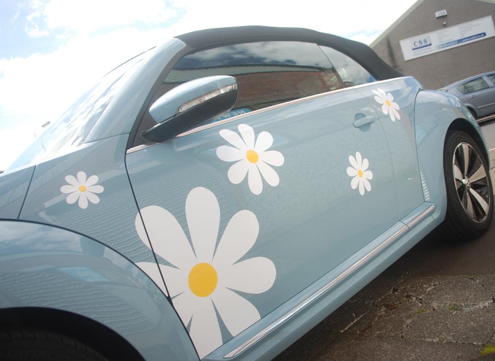 1000x730px daisy2